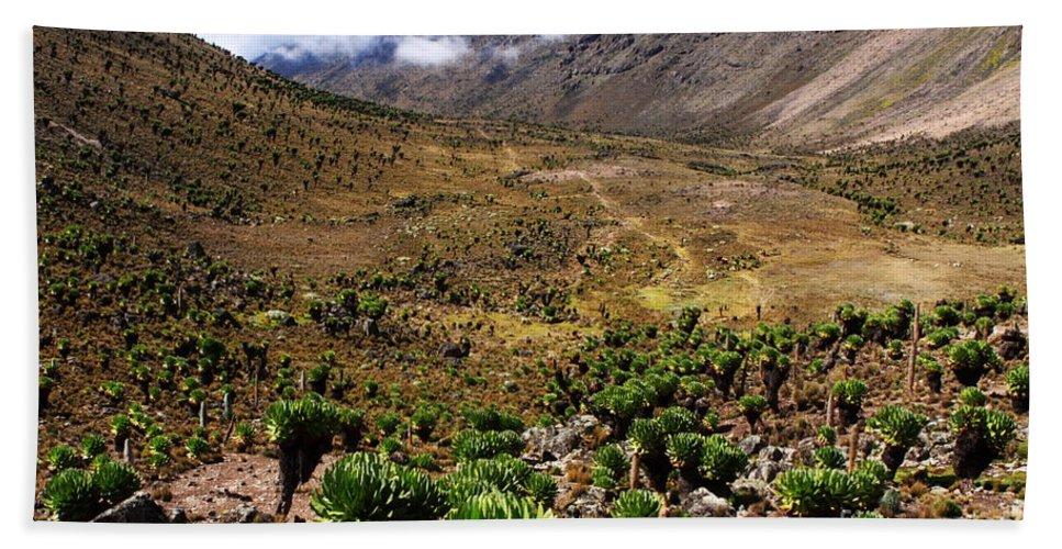 Mount Kenya Hand Towel featuring the photograph Mackinder's Valley by Aidan Moran