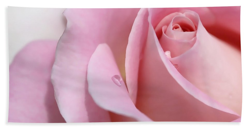Rose Hand Towel featuring the photograph Macro Pink Rose Flower Raindrop by Jennie Marie Schell