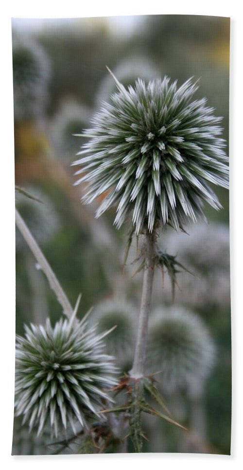 Allium Sphaerocephalon Hand Towel featuring the photograph Macro Seed Head Of Round Headed Garlic by Taiche Acrylic Art