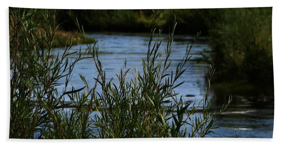 Madison River Bath Towel featuring the photograph Madison River by Greg Patzer