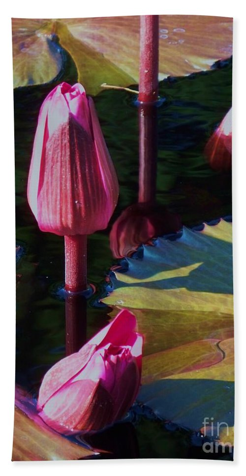 Photograph Bath Sheet featuring the photograph Magenta Lily Pads by Eric Schiabor