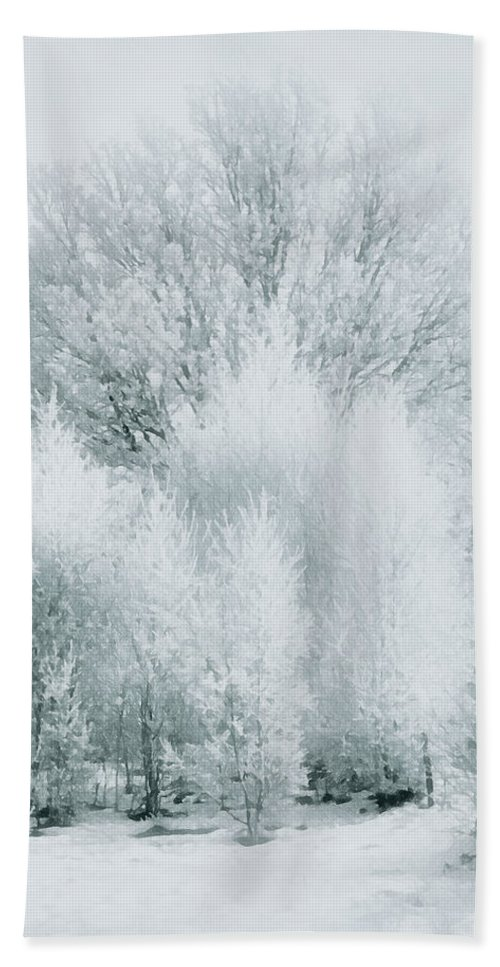 Landscape Bath Sheet featuring the photograph Magical Snow Palace by Georgiana Romanovna