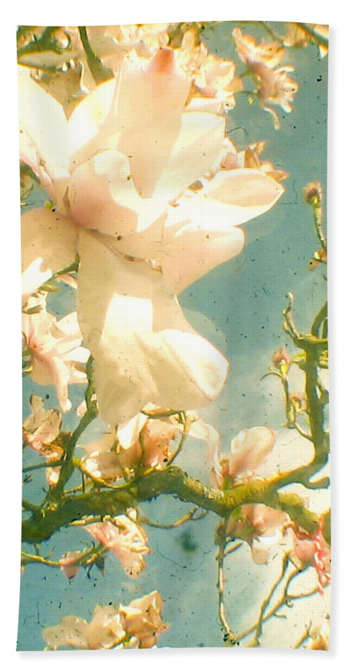 Magnolia Hand Towel featuring the photograph Magnolia by Cassia Beck