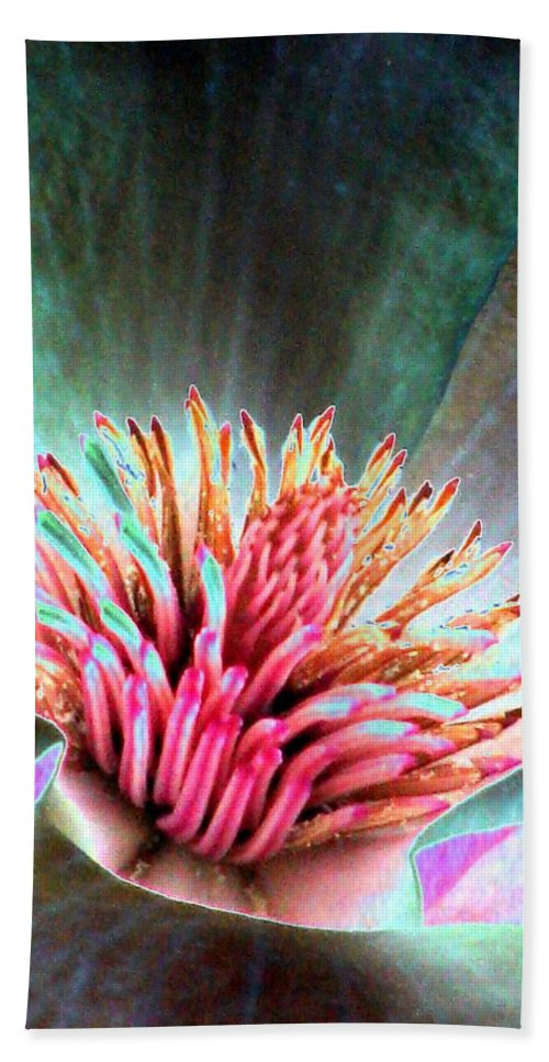 Magnolia Hand Towel featuring the photograph Magnolia Flower - Photopower 1841 by Pamela Critchlow