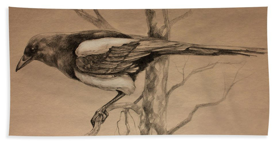 Magpie Bath Sheet featuring the drawing Magpie Sketch by Derrick Higgins