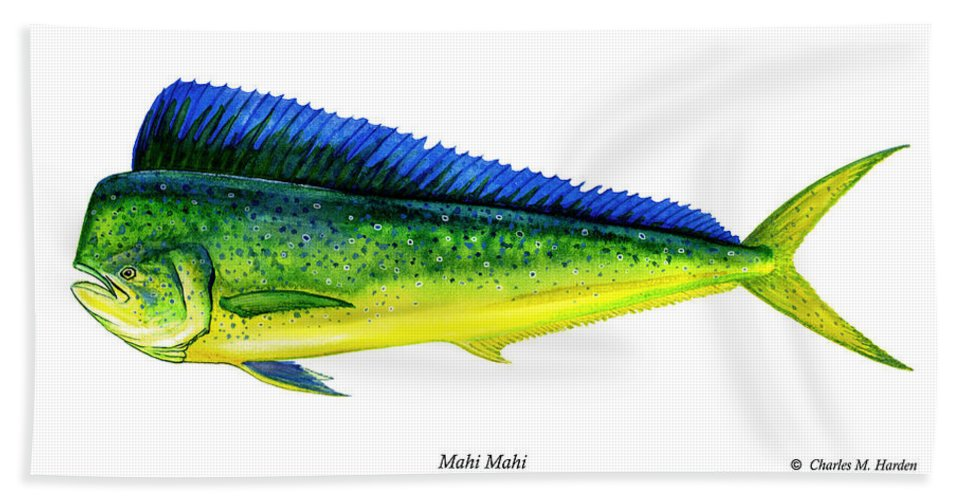 Charles Hand Towel featuring the painting Mahi Mahi by Charles Harden