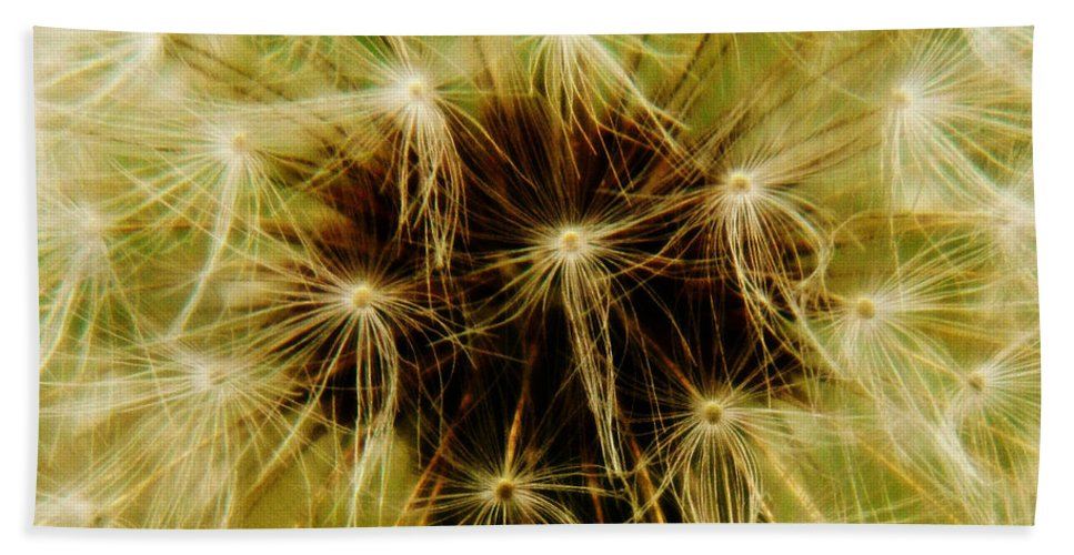 Dandelion Bath Sheet featuring the photograph Make A Wish 2 by Andrea Anderegg