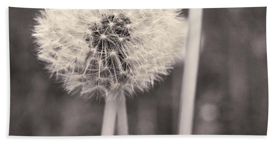 Flower Head Hand Towel featuring the photograph make a wish II by Priska Wettstein