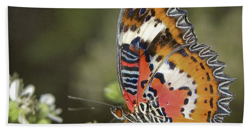 Butterfly Bath Sheet featuring the photograph Malay Lacewing by David and Carol Kelly