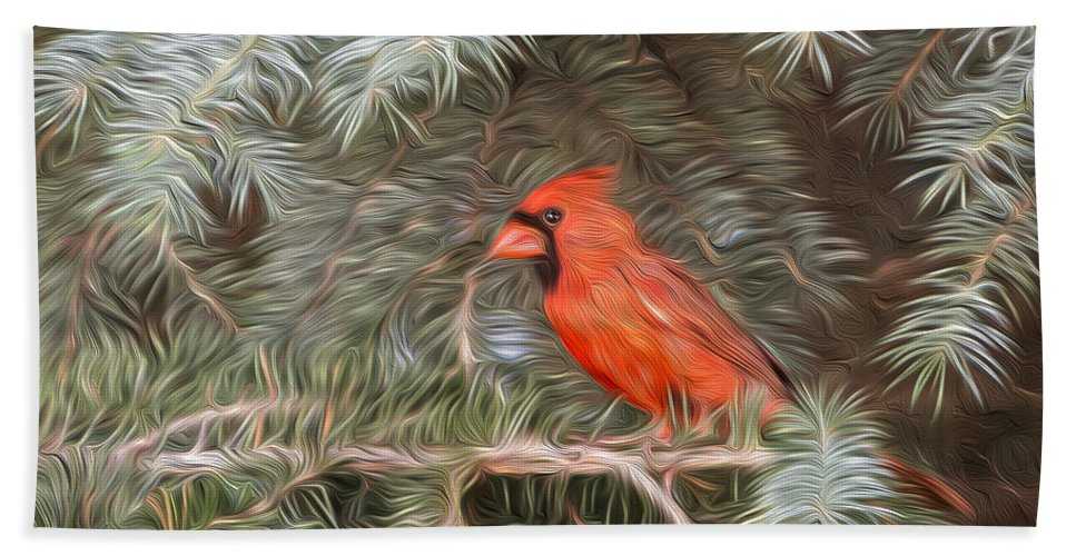 Cardinal Hand Towel featuring the photograph Male Cardinal In Spruce Tree by Patti Deters