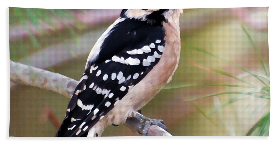 Male Downy Woodpecker Bath Sheet featuring the photograph Male Downy Woodpecker by Kerri Farley
