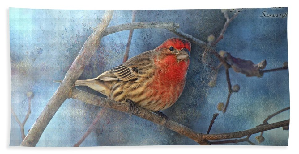 Animals Hand Towel featuring the photograph Male Housefinch With Verse by Debbie Portwood