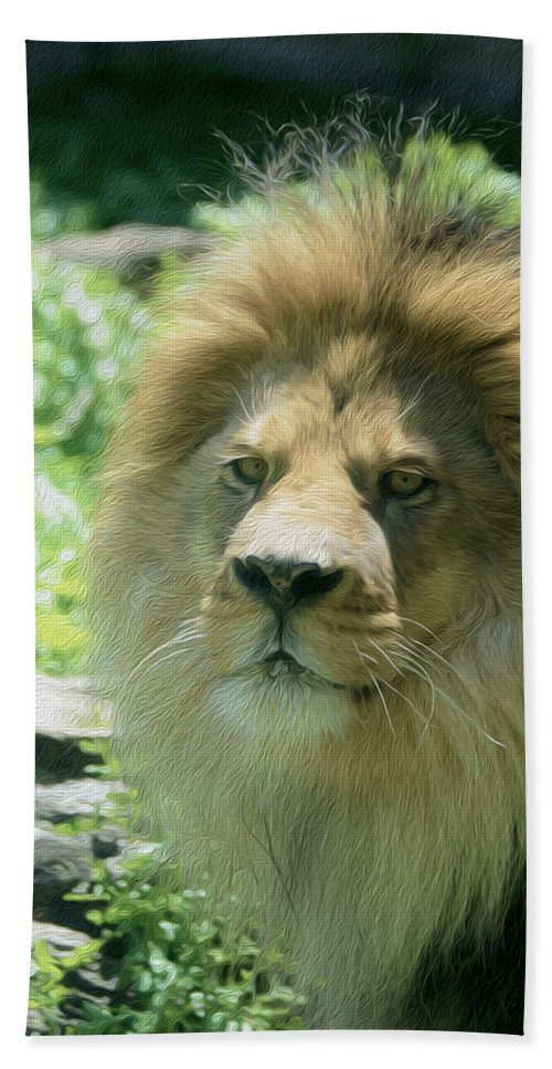 Male Lion Hand Towel featuring the photograph Male Lion Up Close by Tracy Winter