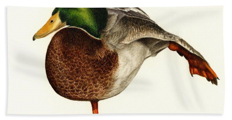 Duck Hand Towel featuring the painting Mallard Ballet by Pat Erickson