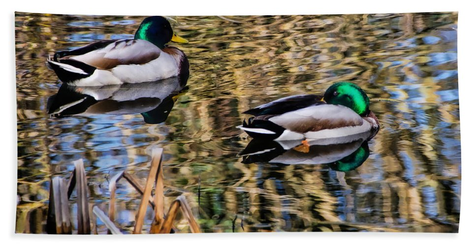 Mallards Hand Towel featuring the photograph Mallards In The Reeds by Susie Peek