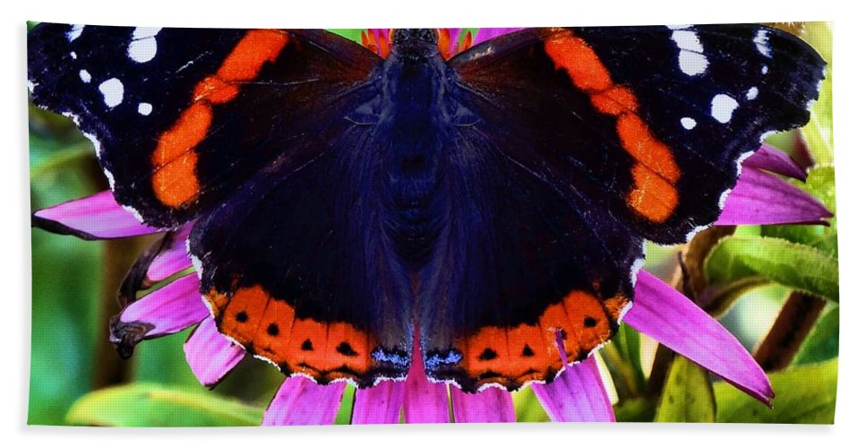 Butterfly Photograph Hand Towel featuring the photograph Mammoth Butterfly by Dan Sproul