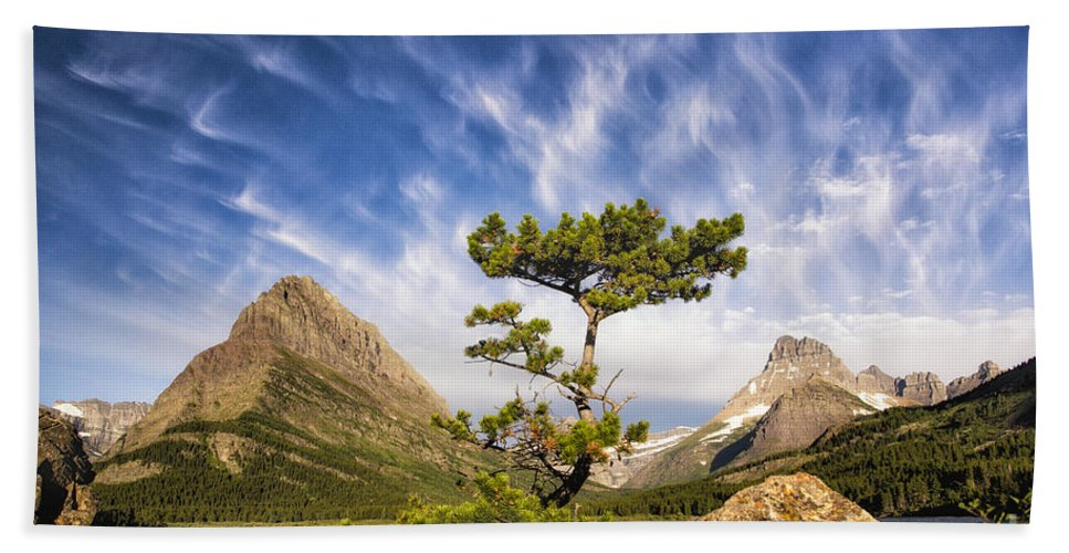 Glacier Hand Towel featuring the photograph Many Glacier Tree by Timothy Hacker