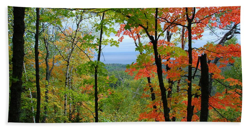 Landscape Hand Towel featuring the photograph Maples Against Lake Superior - Tettegouche State Park by Cascade Colors