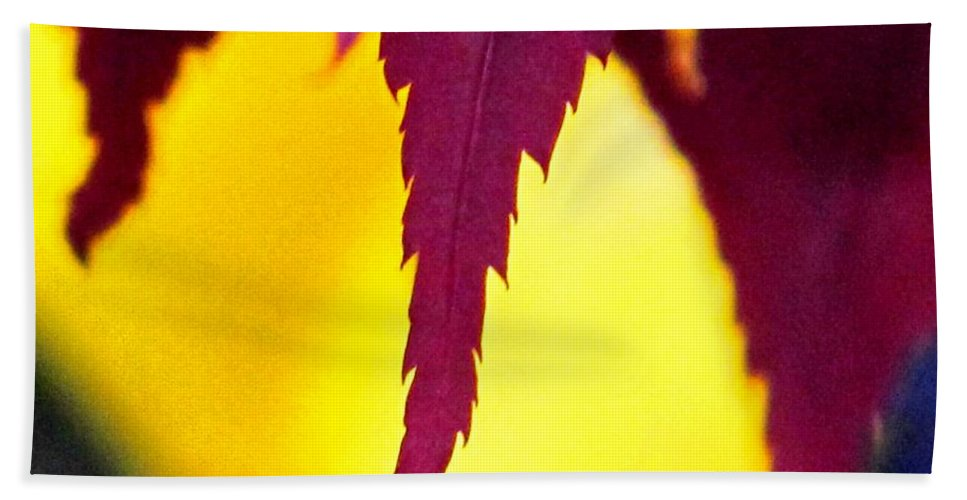 Maroon Hand Towel featuring the photograph Maroon And Yellow by Ian MacDonald