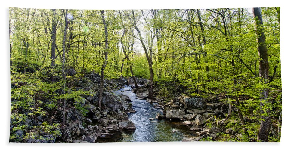 Marsh Bath Sheet featuring the photograph Marsh Creek In Spring by Bill Cannon