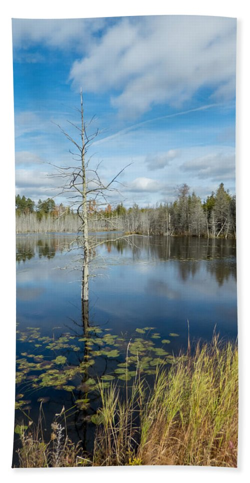Landscape Bath Sheet featuring the photograph Marsh Reflections by Richard Kitchen