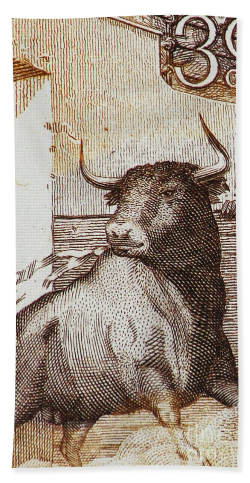 Bullfight Hand Towel featuring the photograph Matador 1 by Andy Prendy