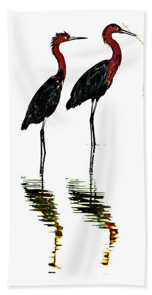 Birds Bath Sheet featuring the photograph Mates by Doug Heslep