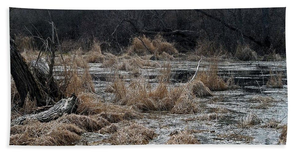 Wetland Hand Towel featuring the photograph Mates by Joseph Yarbrough