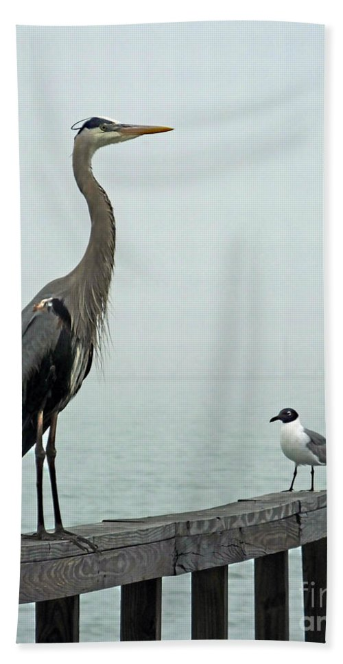 Blue Heron Hand Towel featuring the photograph Youve Got A Friend by Lizi Beard-Ward