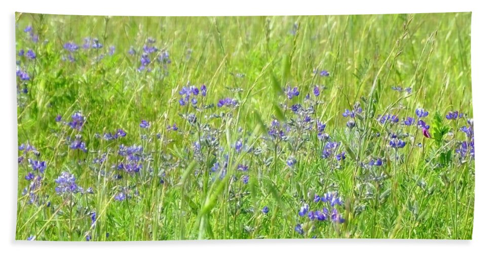 Grass Hand Towel featuring the photograph Meadow Lupine by Donna Blackhall