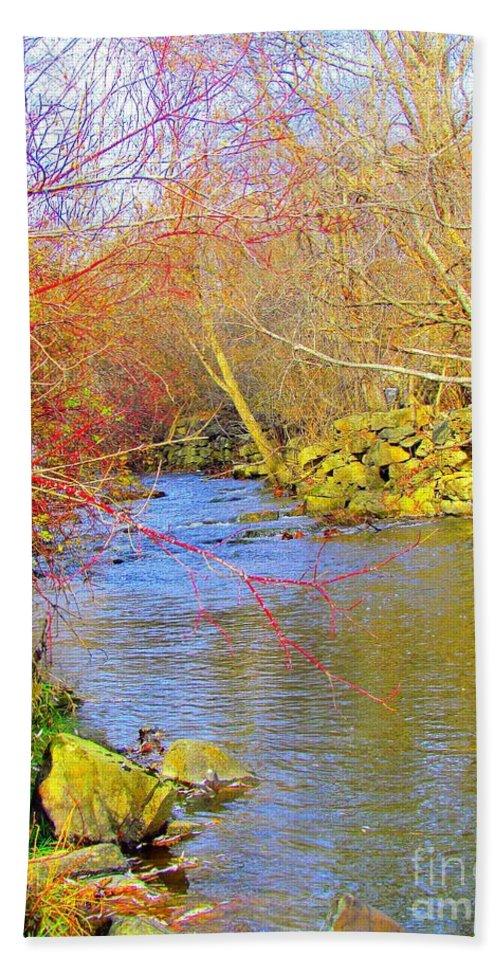 Royal River Hand Towel featuring the photograph Meandering Stream by Elizabeth Dow