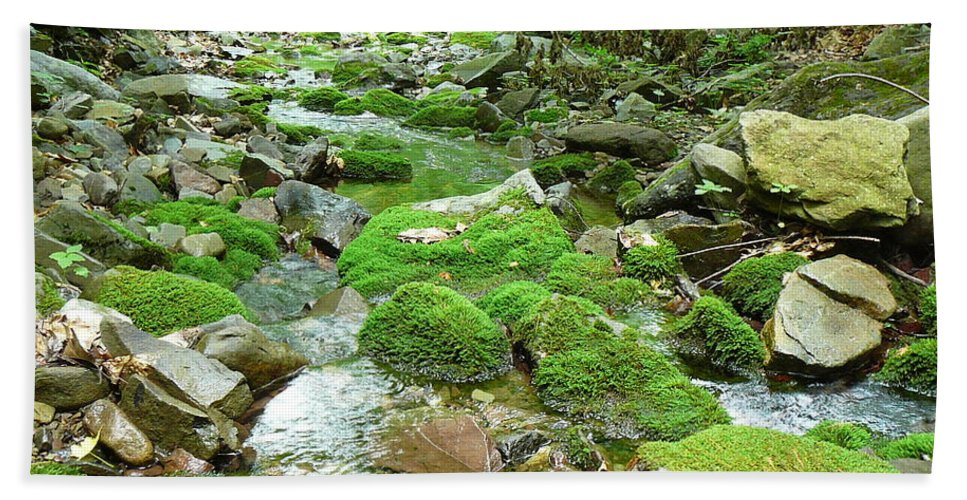 Pocono Bath Sheet featuring the photograph Meandering Stream by Two Bridges North
