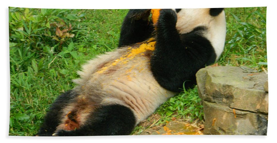 Mei Xiang Chowing On Frozen Treat Bath Sheet featuring the photograph Mei Xiang Chowing On Frozen Treat by Emmy Vickers