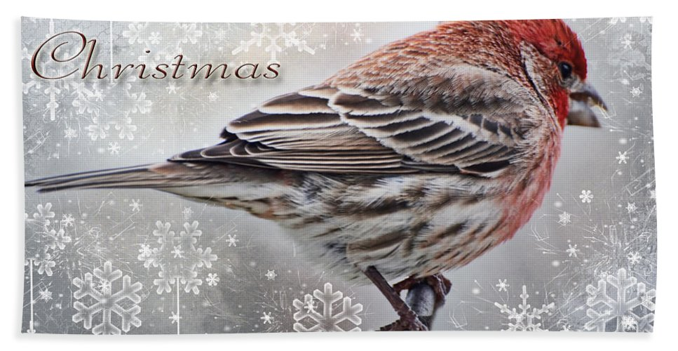 Nature Hand Towel featuring the photograph Merry Christman Finch Greeting Card by Debbie Portwood
