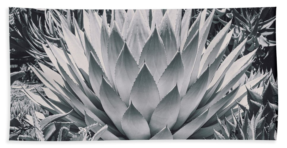 Cactus Hand Towel featuring the photograph Mescal Agave by Kelley King