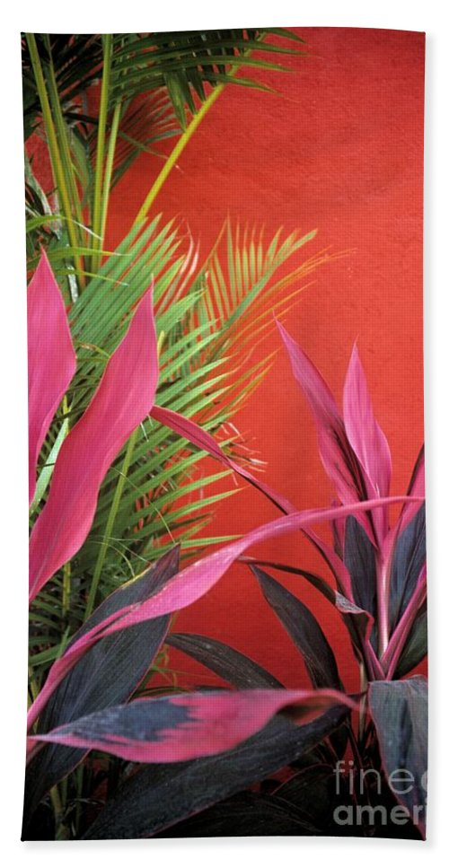 Red Wall Bath Sheet featuring the photograph Mexican Garden Stil Life by John Harmon