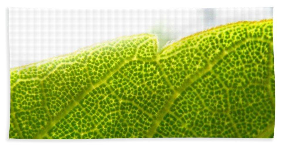 Leaf Bath Towel featuring the photograph Micro Leaf by Rhonda Barrett