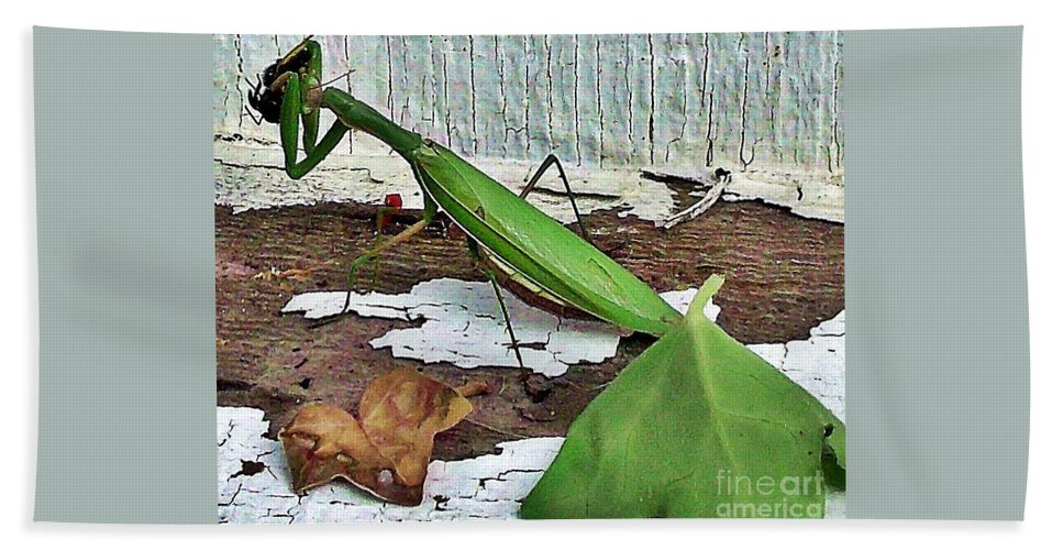 Praying Mantis Bath Sheet featuring the photograph Midday Snack by Christian Mattison