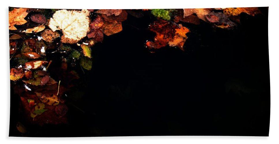 Photography Bath Sheet featuring the photograph Midnight Feast by Ryan Burton