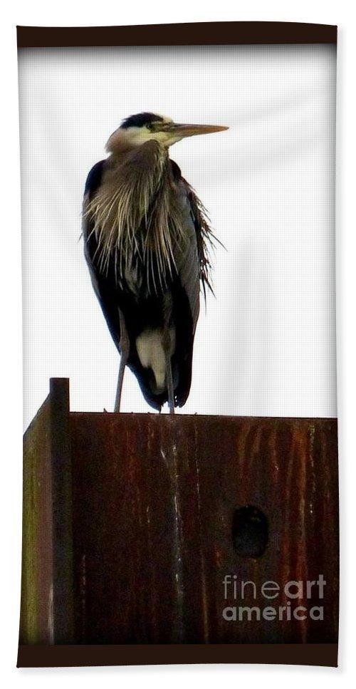 Birds Bath Sheet featuring the photograph Mighty High Heron by Susan Garren