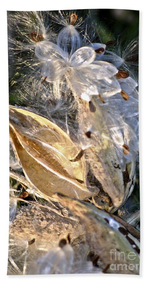 Milkweed Canvas Prints Hand Towel featuring the digital art Milkweed II by Danielle Summa