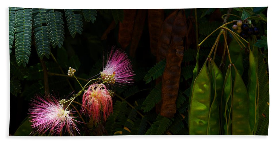 Mimosa Flower Hand Towel featuring the photograph Mimosa And Peppervine by Jason Politte