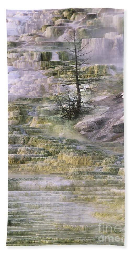 North America Hand Towel featuring the photograph Minerva Springs Terraces Yellowstone National Park by Dave Welling