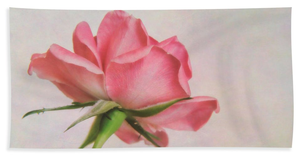 Rose Hand Towel featuring the photograph Miniature Rose II by David and Carol Kelly