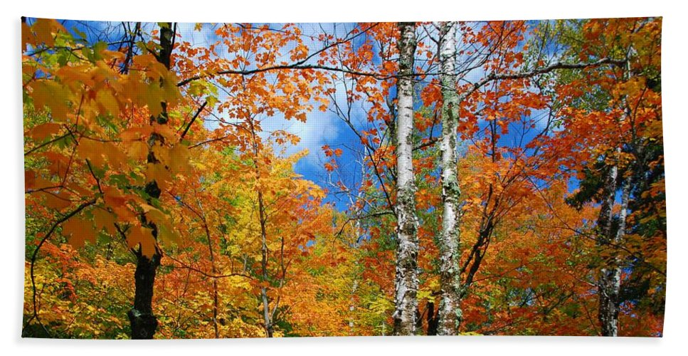 Landscape Hand Towel featuring the photograph Minnesota Autumn Foliage by Cascade Colors