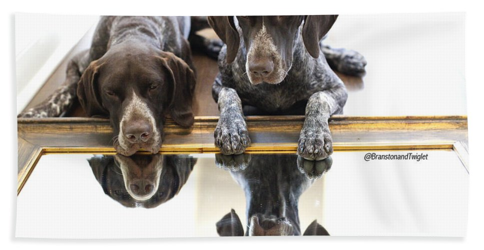 Gsp Bath Sheet featuring the photograph Mirror Mirro by Kimberly Petts