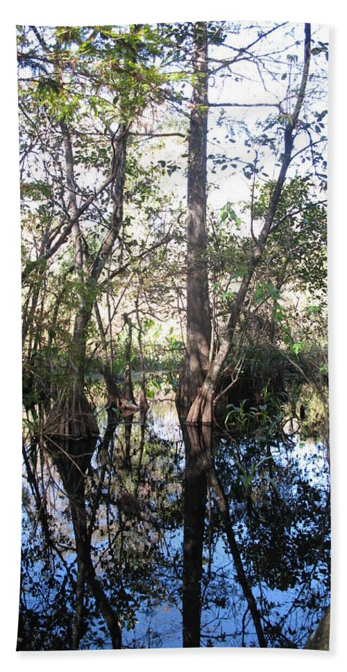 Swamp Hand Towel featuring the photograph Mirroring The Swamp by Christiane Schulze Art And Photography