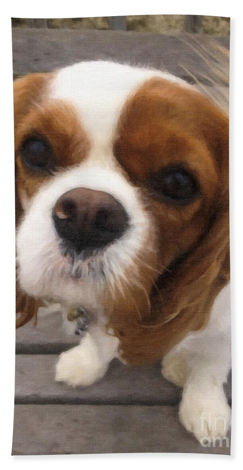 King Charles Cavalier Spaniel Hand Towel featuring the digital art Miss Daisy by Dale Powell