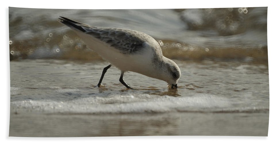Birds Hand Towel featuring the photograph Mission Complete by Ernie Echols