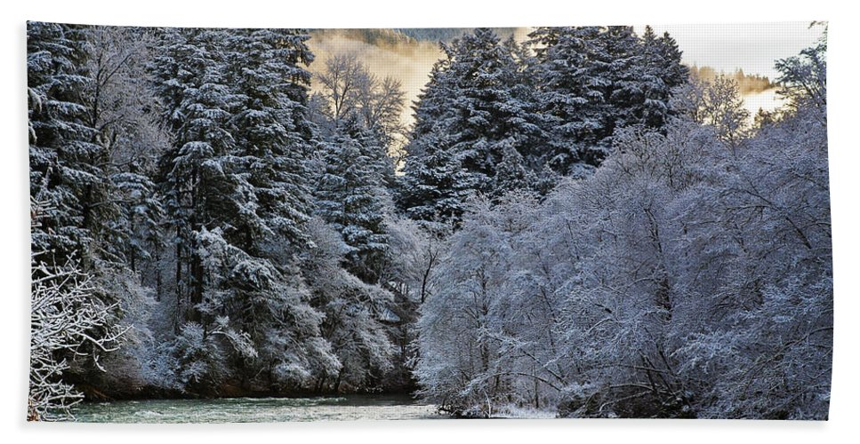 Winter Hand Towel featuring the photograph Mist And Snow On Trees by Belinda Greb
